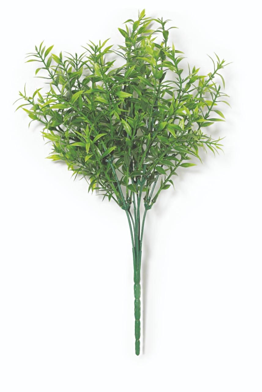 PLANTA PERMANENTE (11696)
